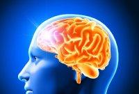 촬영해보니 뇌손상 징후…치매에 걸리기 쉬운 '생활습관 3가지'