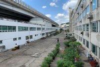 홍은동 50년된 유진상가, 앞마당 재생 밑그림