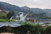 태풍 '링링' 특별재난지역 인천 강화군…피해 복구에 67억 투입