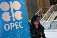 """OPEC, 추가 감산할까…""""30만~40만배럴 감산 확대할 듯"""" 전망"""