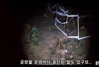 '폐가체험' BJ 생중계 중 변사체 발견…시청자들 '충격'