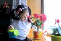 """""""우리는 꽃나비"""" 북한판 브이로그·먹방, 어떻게 생각하십니까"""