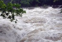 오늘 오후~내일 낮 전국 많은 비…남부지역 호우특보 유의