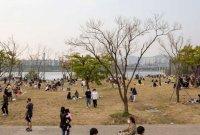 [포토]한강공원 인파