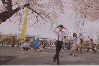아직 벚꽃엔딩은 이르다… 영등포구, 30일까지 온라인 봄꽃축제