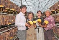 남편과 함께 '귀농' 어엿한 농업경영인…13만개 원목서 친환경 상황버섯 키워