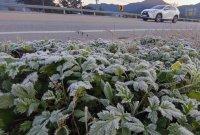 [내일 날씨]아침 추위 여전…낮부터 전국 곳곳서 비