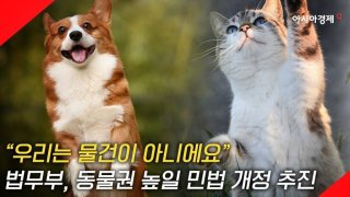 """[현장영상] """"우리는 물건이 아니에요!"""" 동물, 인간과 한 뼘 더 가까이"""
