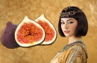 여왕의 과일 '무화과' 맛있게 먹는 법!