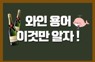 타닌감이 뭔데? 와인 용어 쉽게 알아보자!