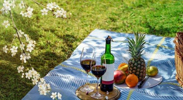 여름! 놓치지 말아야 할 와인 6