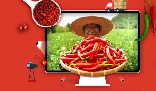 코로나19 극복하는 비대면 온라인 축제