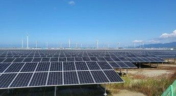 염전마을 뒤덮은 태양광…염전 40만평 중 25만평 사라져