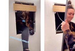"""""""아파트 욕실 거울 뜯었더니 그 안에…"""" 오싹"""