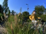 [포토] 가을 라이딩 즐기는 시민들