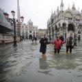 '물 바다' 된 '물의 도시'