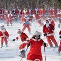 '스키 타고 달리는 산타들'