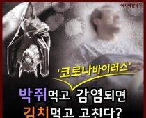 박쥐먹고 '코로나바이러스' 감염되면 김치먹고 고친다?
